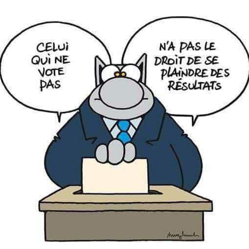 """Bande dessiné : """"Celui qui ne vote pas, n'a pas le droit de se plaindre des résultats"""""""